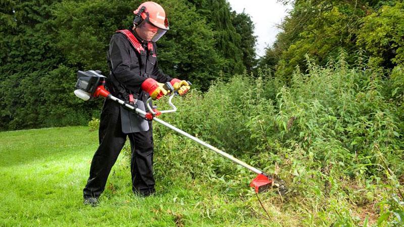 Come curare il proprio giardino in maniera perfetta con il decespugliatore
